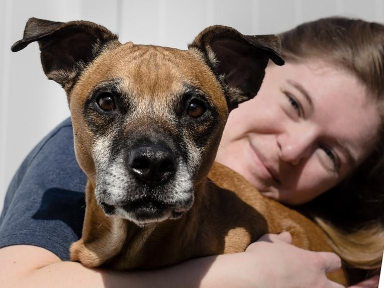 wesleys-pet-portrait-session 8